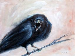 The Crow, a black bird with a high self-esteem